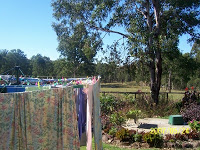 Carnival of Washing Lines