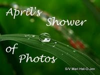 April Shower of Photos – 2009