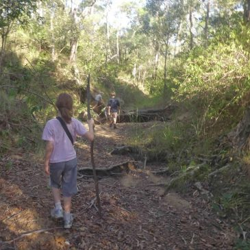 Treasure Hunting in the Bush