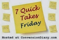 7 Quick Takes Friday (Vol 208)