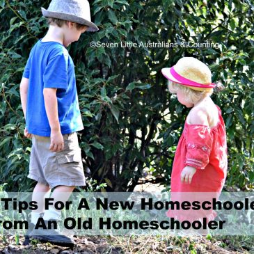 9 Tips For A New Homeschooler From An Old Homeschooler