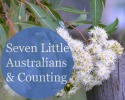 Seven Little Australians & Counting