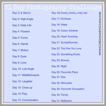 31 Day Photography Challenge: May 2016