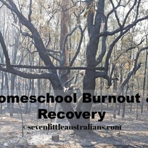 Homeschool Burnout & Recovery