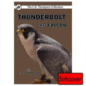 Thunderbolt the Falcon