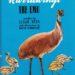 The Story of Karrawingi the Emu