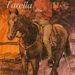 Pony from Tarella